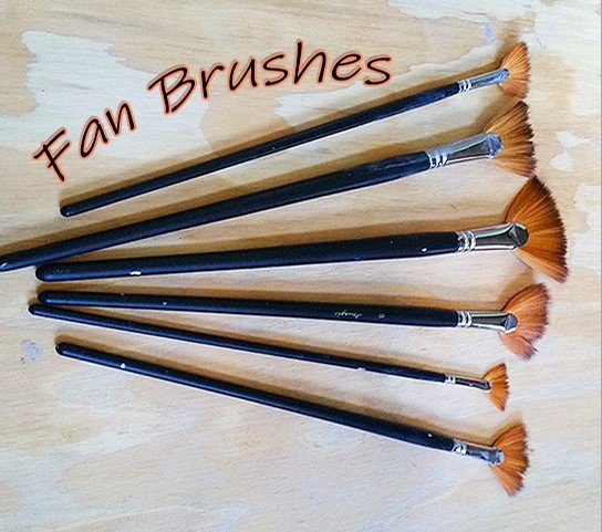 a picture of fan brushes