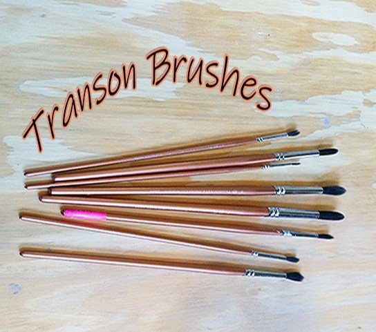 a picture of transon brushes